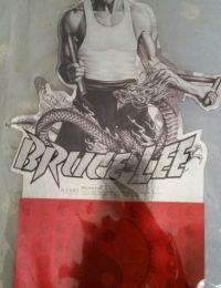 vintage Bruce lee calander