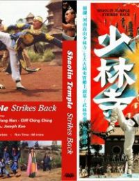 河南嵩山少林寺 - Shaolin Temple Strikes Back (1981)