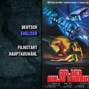 霹靂女王蜂 (忍者版本) - Golden Ninja Warrior (1985) - Orginal Dvd 2