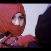霹靂女王蜂 (忍者版本) - Golden Ninja Warrior (1985) - Orginal Dvd 4