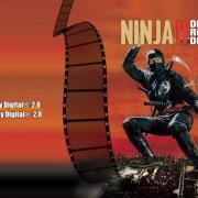 Revenge of the Ninja 2