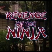 Revenge of the Ninja 3
