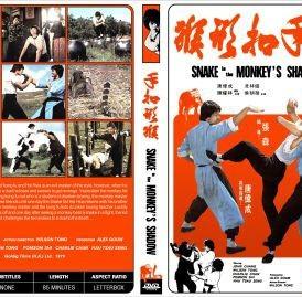 snake in monkeys Shadow